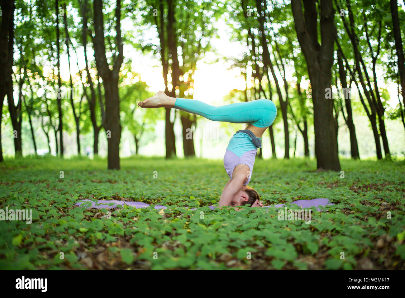 Thin brunette girl plays sports and performs yoga poses in a summer park on a sunset background. Woman doing exercises on the yoga mat. Summer forest. - Stock Image