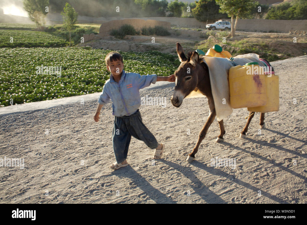 A young boy guides his donkey with four jerry cans full of water, on a dirt road, on the outskirts of the Bamyan city, in the central Bamyan province. He delivers and sell water door to door to those families who are either affluent or do not have the means to transport water from streams to their homes. The average Afghan men struggles to support their family on the equivalent of US $3 per day, and some 20 to 30 per cent of children of primary-school age work to supplement the family income. There are thousands of children who work in hazardous conditions all over Afghanistan. July 8, 2007. Stock Photo