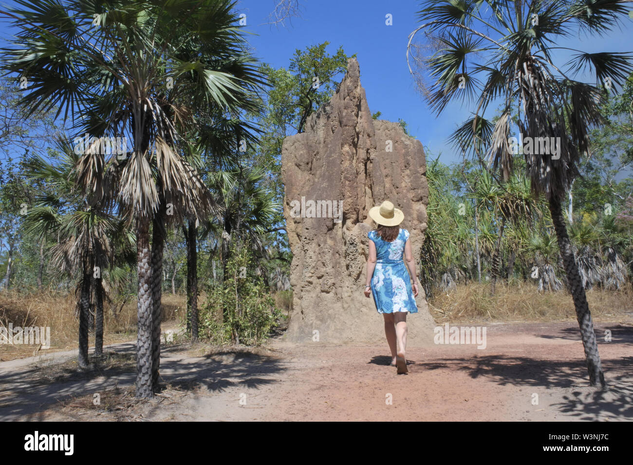Australian adult woman tourist looking at Cathedral termite mound in Litchfield National Park in the Northern Territory of Australia. - Stock Image