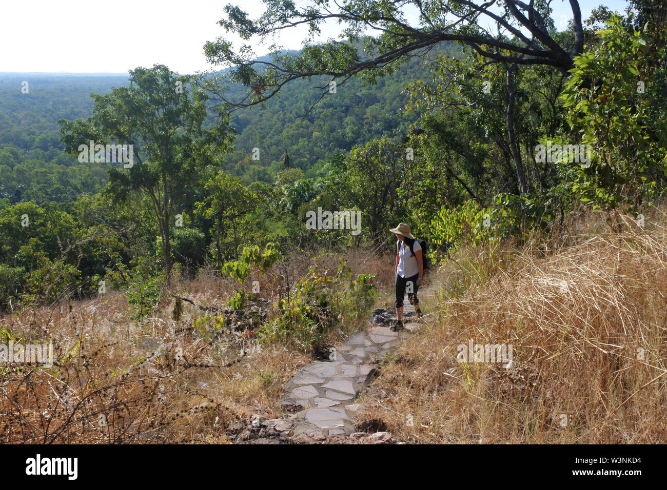 Australian adult woman hiking at Litchfield National Park in the  Northern Territory of Australia - Stock Image