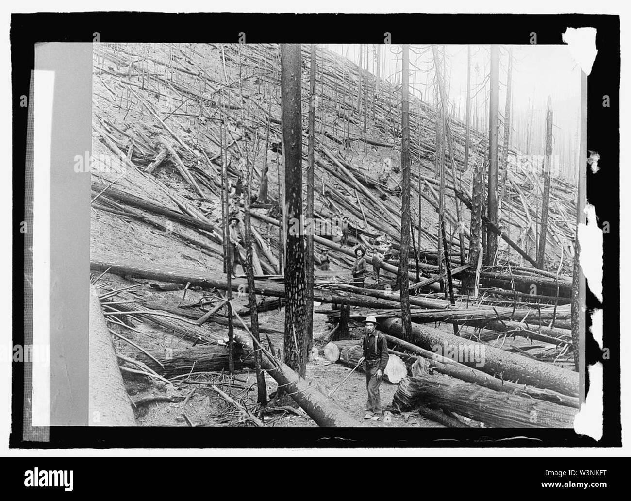 Coeur d'Alene Nat. Forest, Idaho - Stock Image