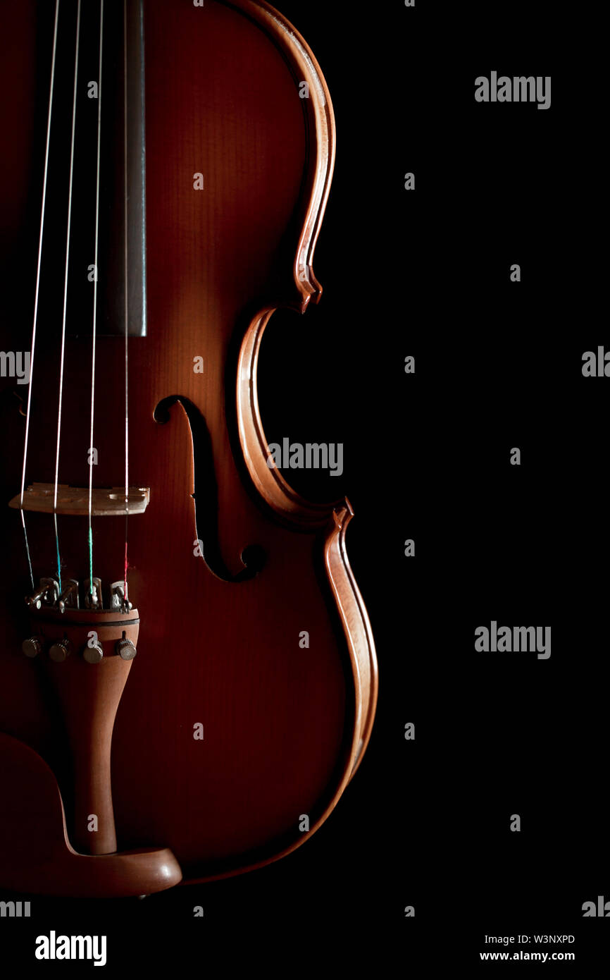 Close up of a violin isolated on a black background - Stock Image