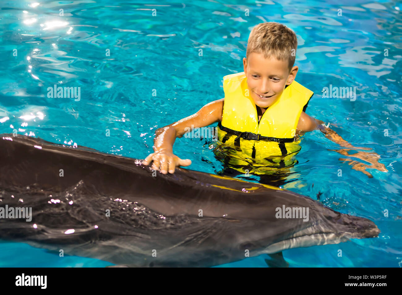 Happy Boy swimming with dolphins in the blue clear water Stock Photo
