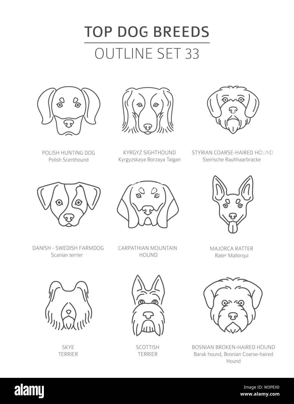 Top dog breeds. Hunting dogs set. Pet outline collection. Vector illustration - Stock Image