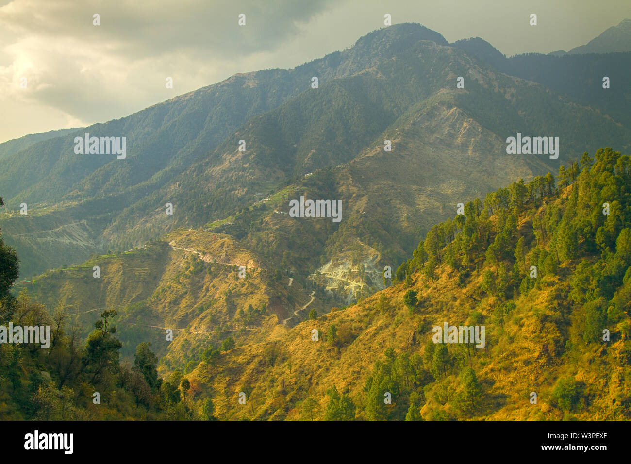 Evergreen mountain forests (rainforest) of the Pre-Himalayas (Sivalik, Shiva Mountains). Area of valley of Parvati river. Young mountains, river in wi - Stock Image