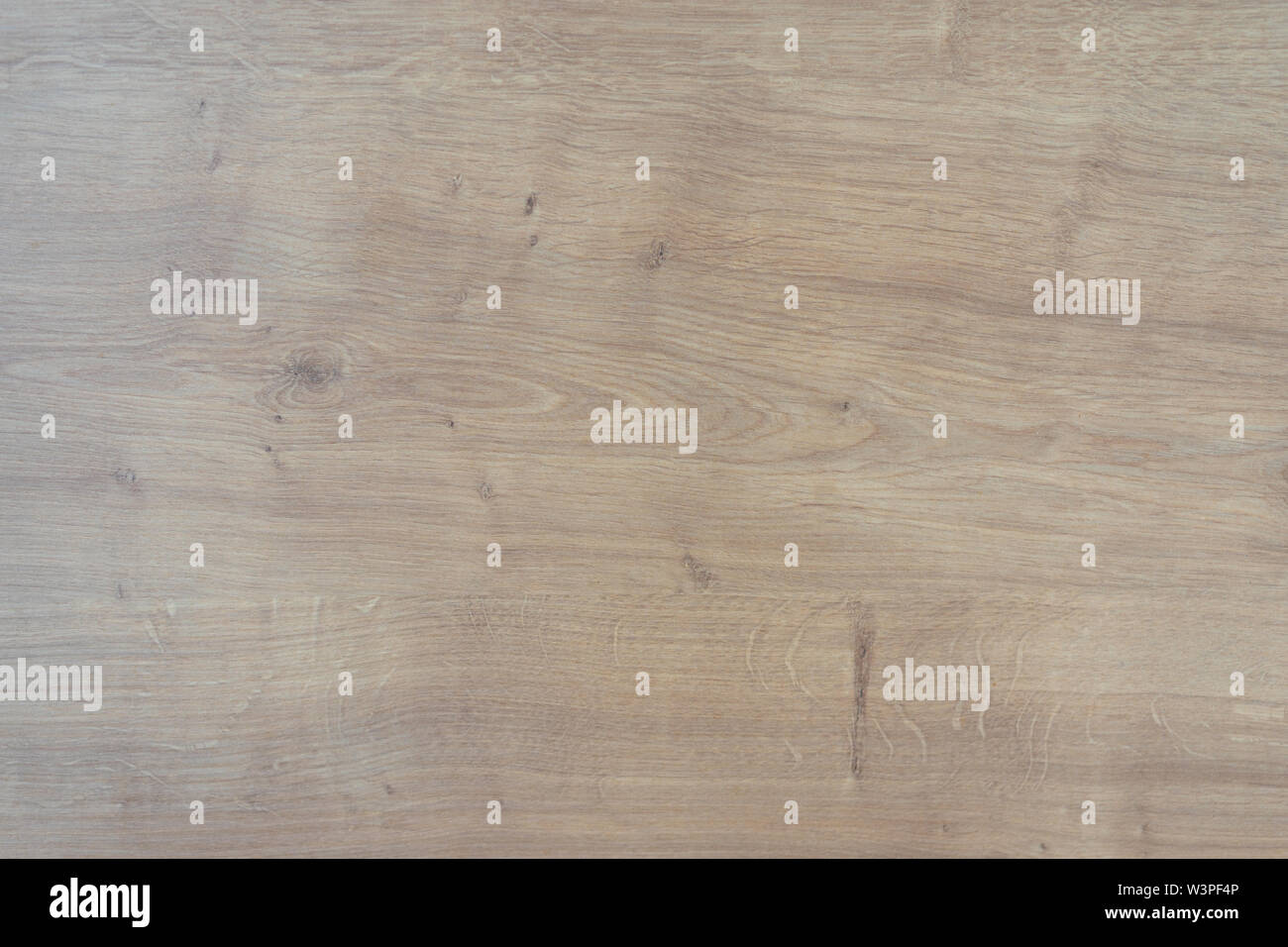 texture of a wooden surface solid oak close up - Stock Image