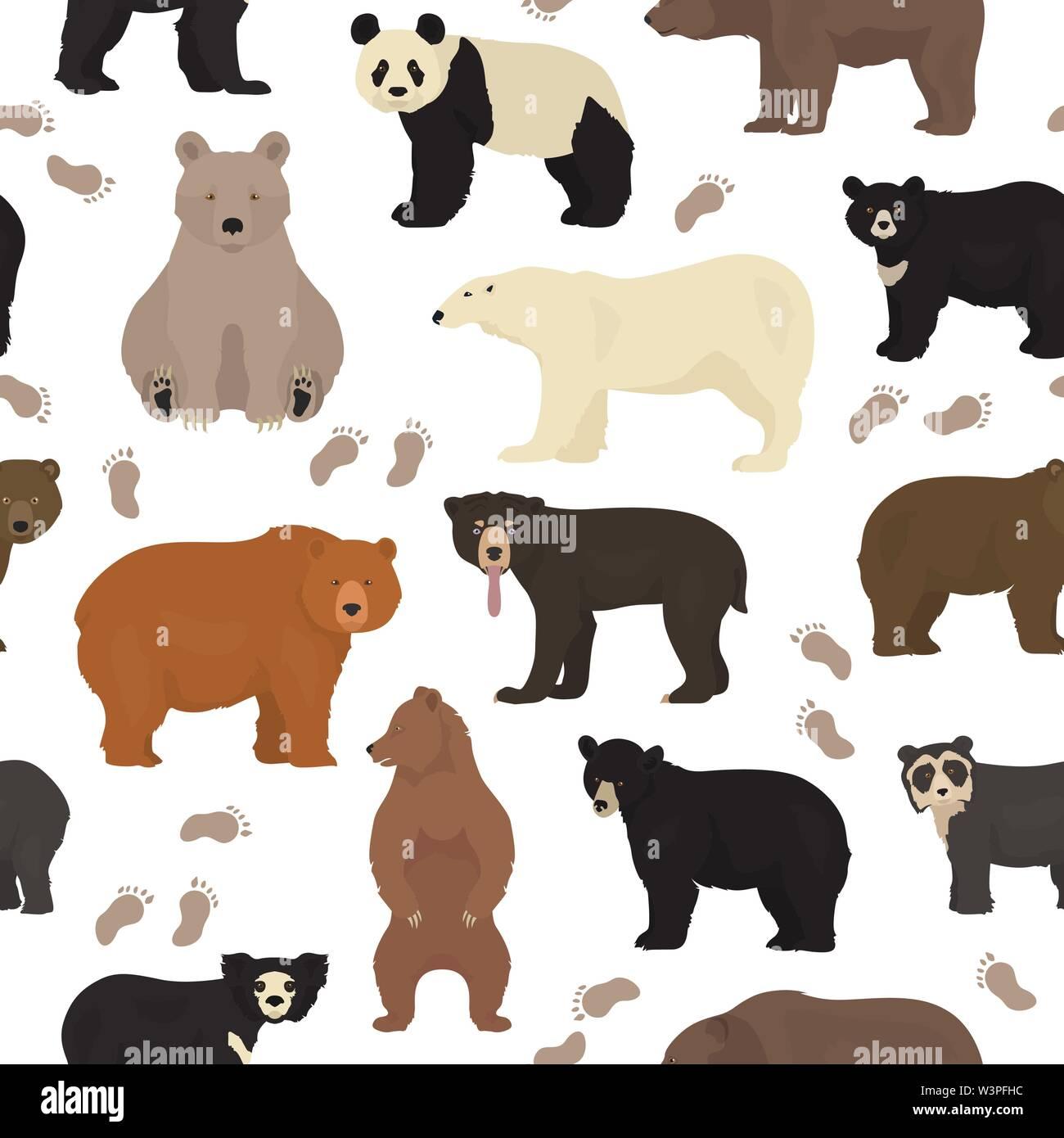 All world bear species in one set. Bears seamless pattern. Vector illustration Stock Vector