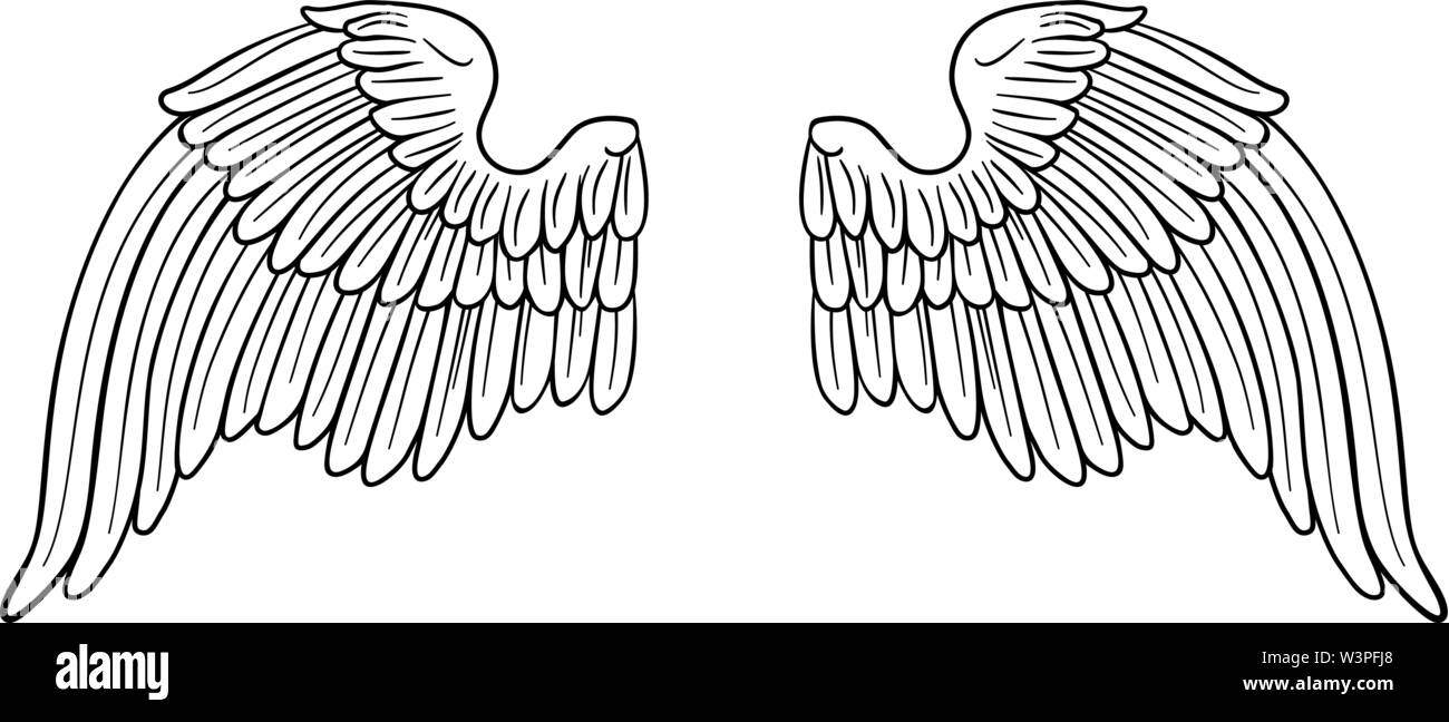 Wings Angel or Eagle Pair - Stock Image