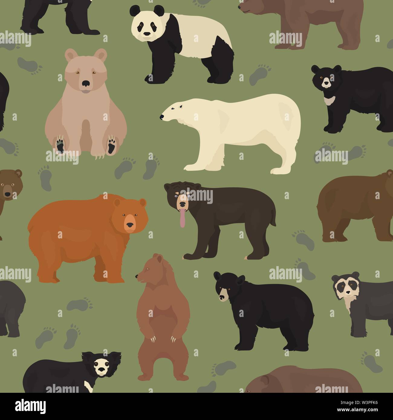 All world bear species in one set. Bears seamless pattern. Vector illustration Stock Vector