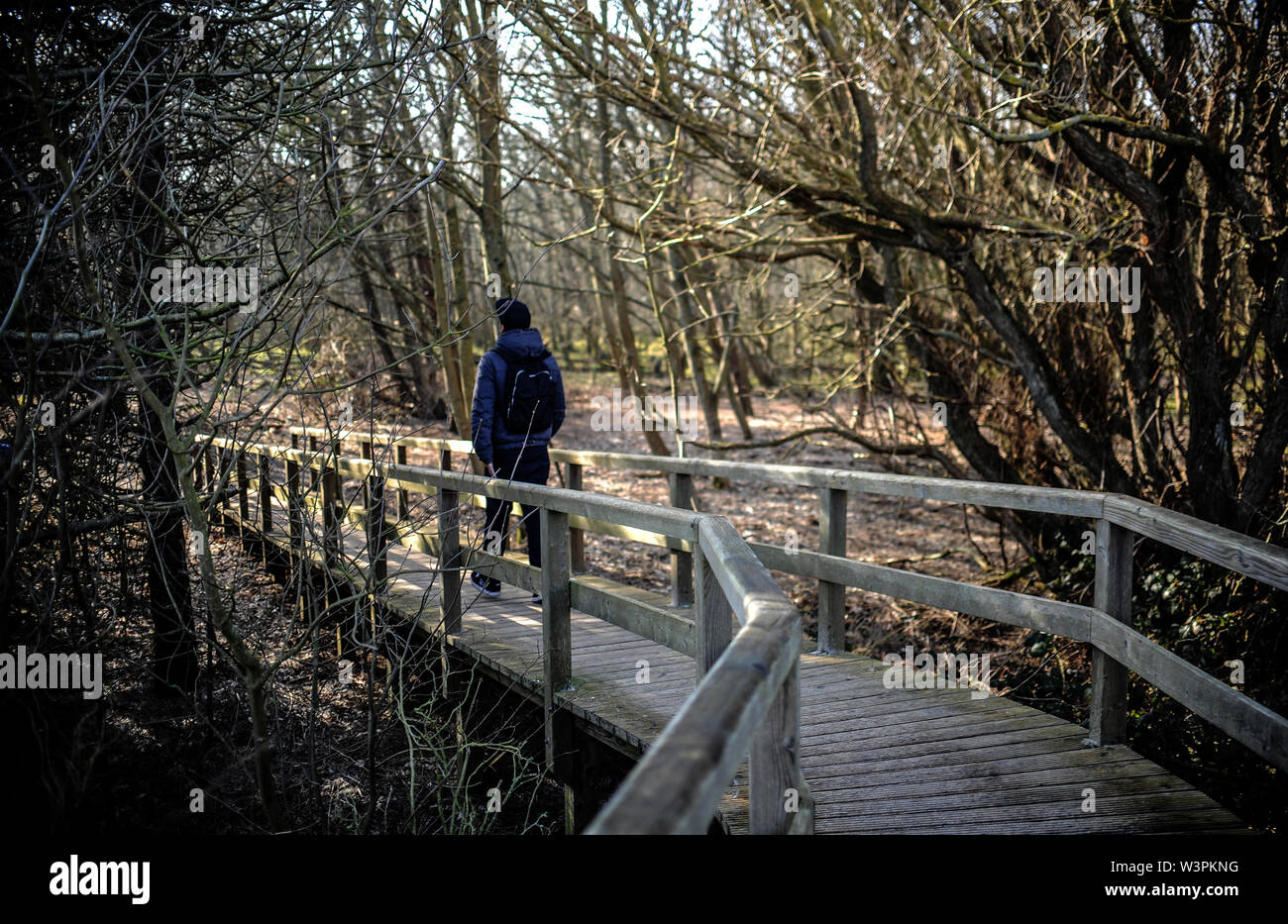 Sylt, Germany. 18th Feb, 2019. A young man walks through the forest of Odde-Hörnum on the island of Sylt. Sylt is the largest North Frisian island in Germany. Credit: Britta Pedersen/dpa-Zentralbild/ZB/dpa/Alamy Live News - Stock Image