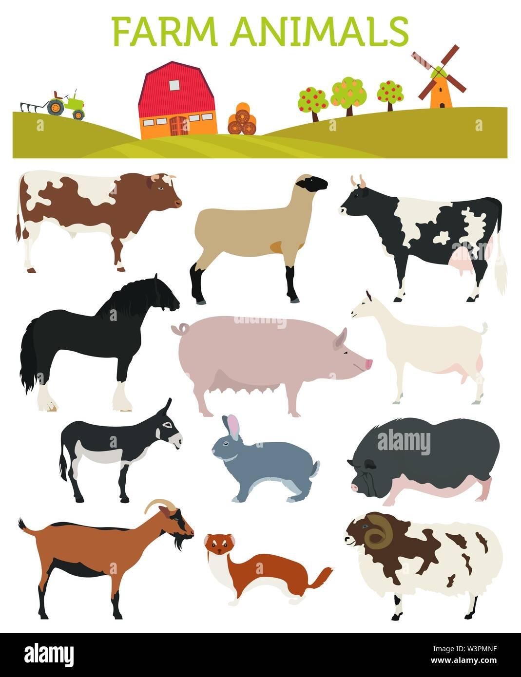Animal Farming Livestock Cattle Pig Goat Ship Horse Donkey Rabbit Fur Icon Set Isolated On White Flat Design Vector Illustration Stock Vector Image Art Alamy