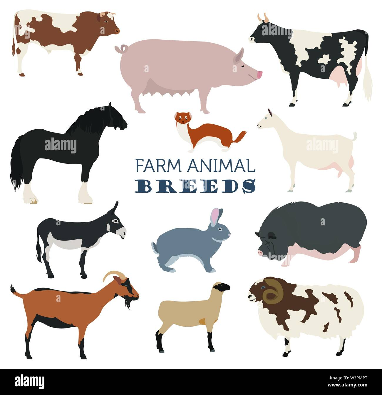 Animal farming, livestock. Cattle, pig, goat, ship, horse, donkey, rabbit, fur  icon set isolated on white. Flat design. Vector illustration Stock Vector