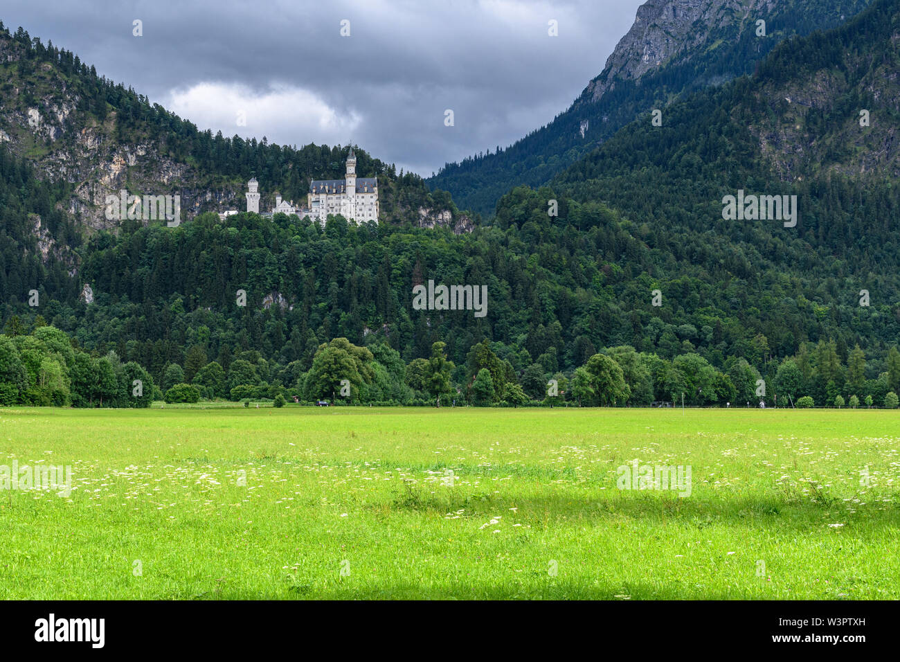 HOHENSCHWANGAU, BAVARIA, GERMANY - JUL 2017: Royal Neuschwanstein castle is a picturesque corner of the Bavarian Alps. - Stock Image