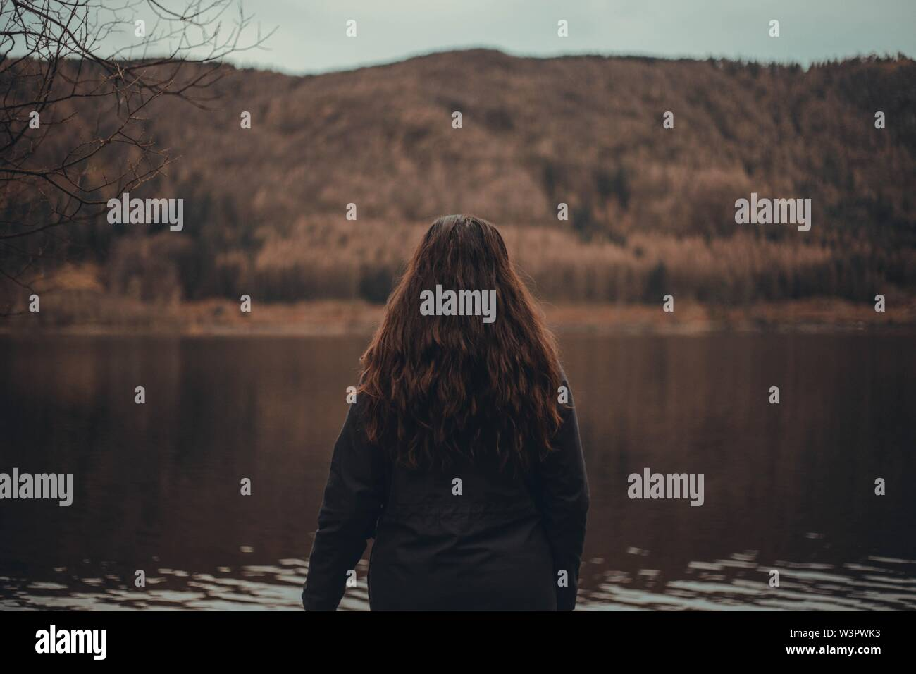 A female with long hair looking at a beautiful lake in a forest - Stock Image