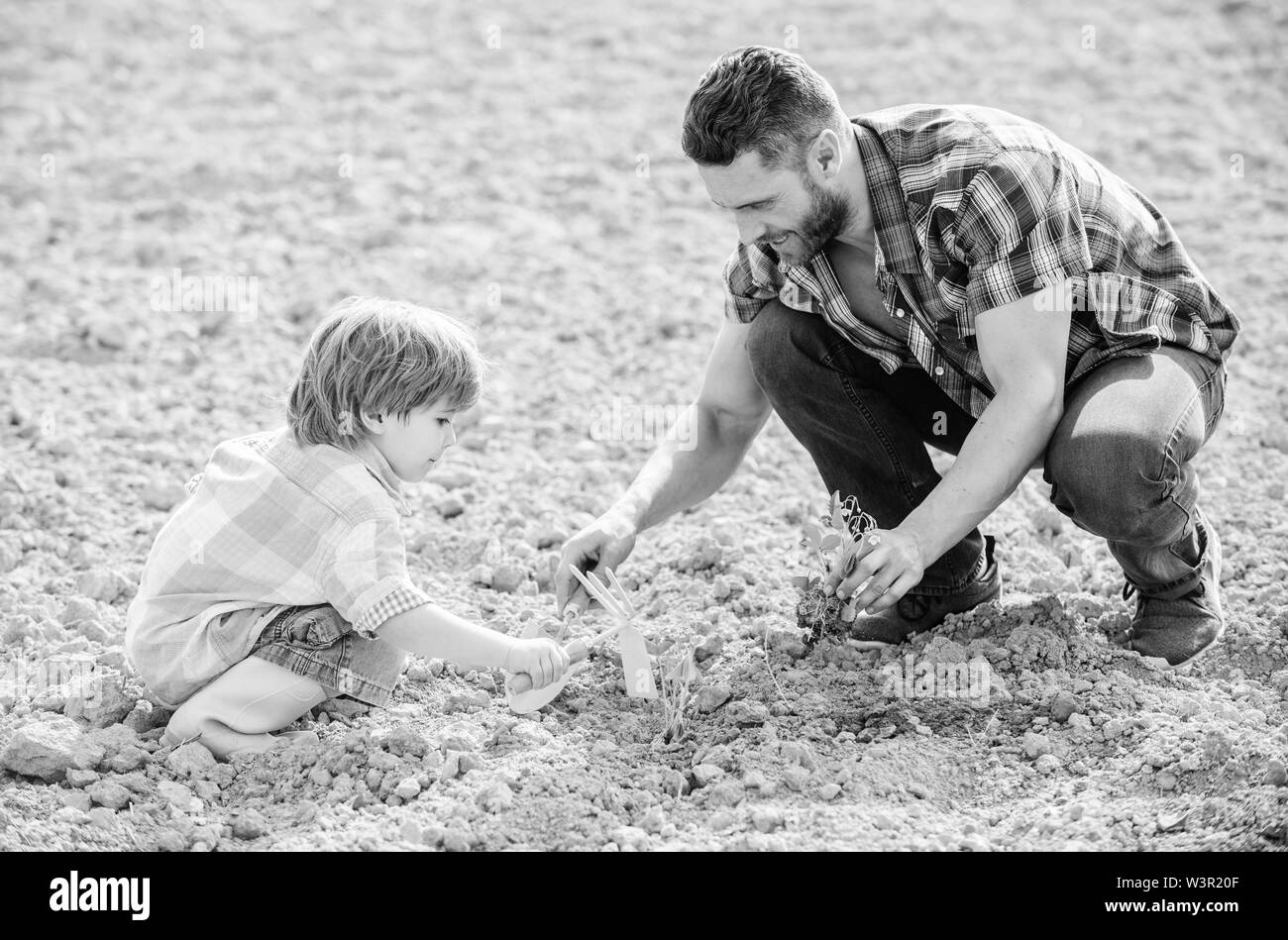 small boy child help father in farming. rich natural soil. Eco farm. father and son planting flowers in ground. new life. soils fertilizers. happy ear - Stock Image