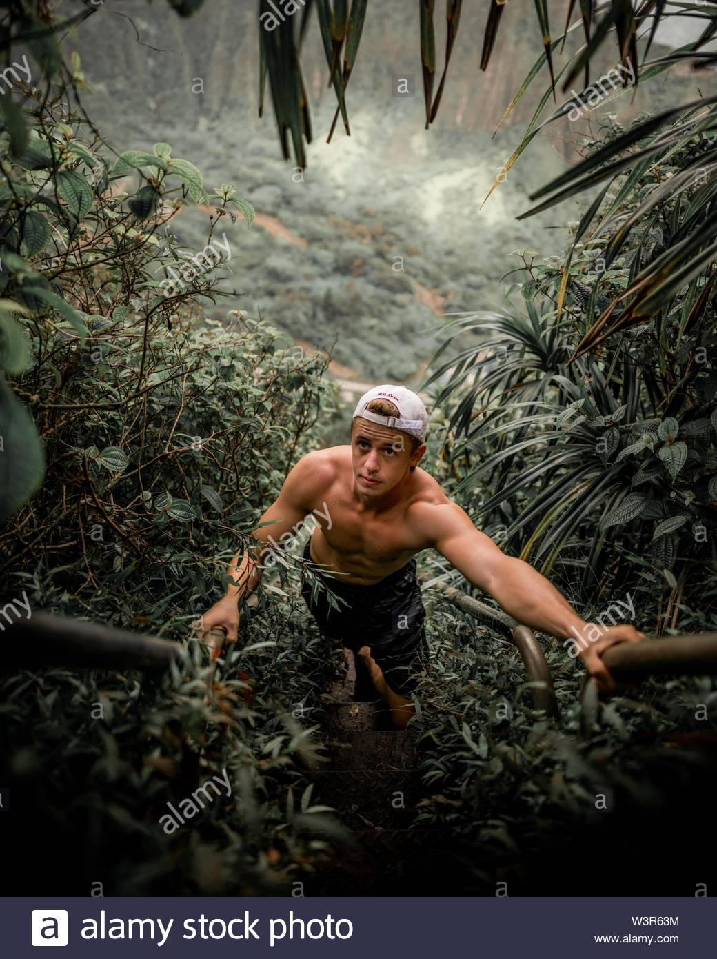 A fit male climbing a steep hill in a tropical jungle surrounded by greenery - Stock Image