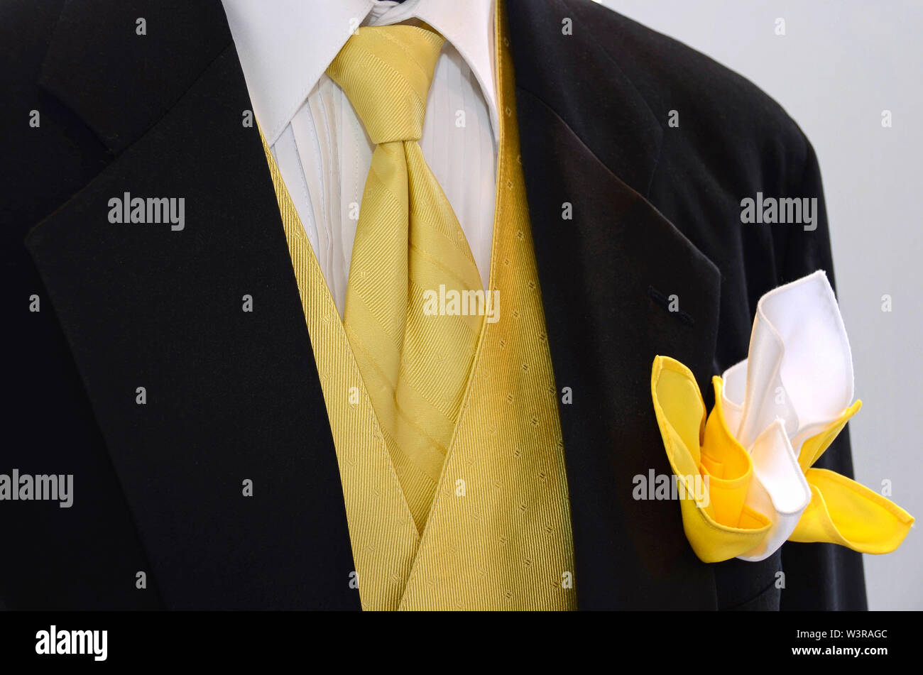 Yellow tie and vest accenting a black tuxedo with boutonniere - Stock Image