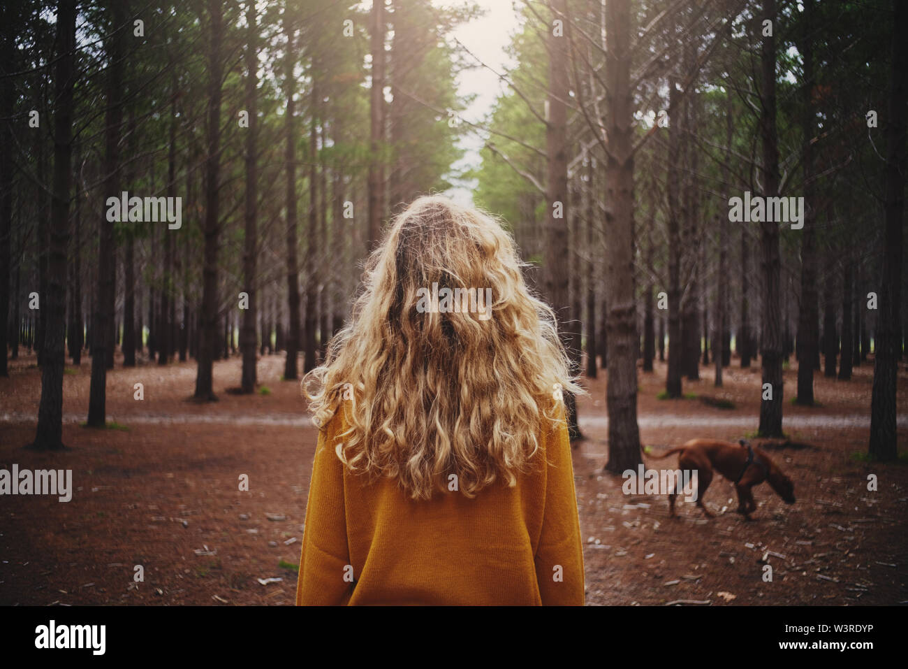 Blonde young woman with her dog in the forest Stock Photo
