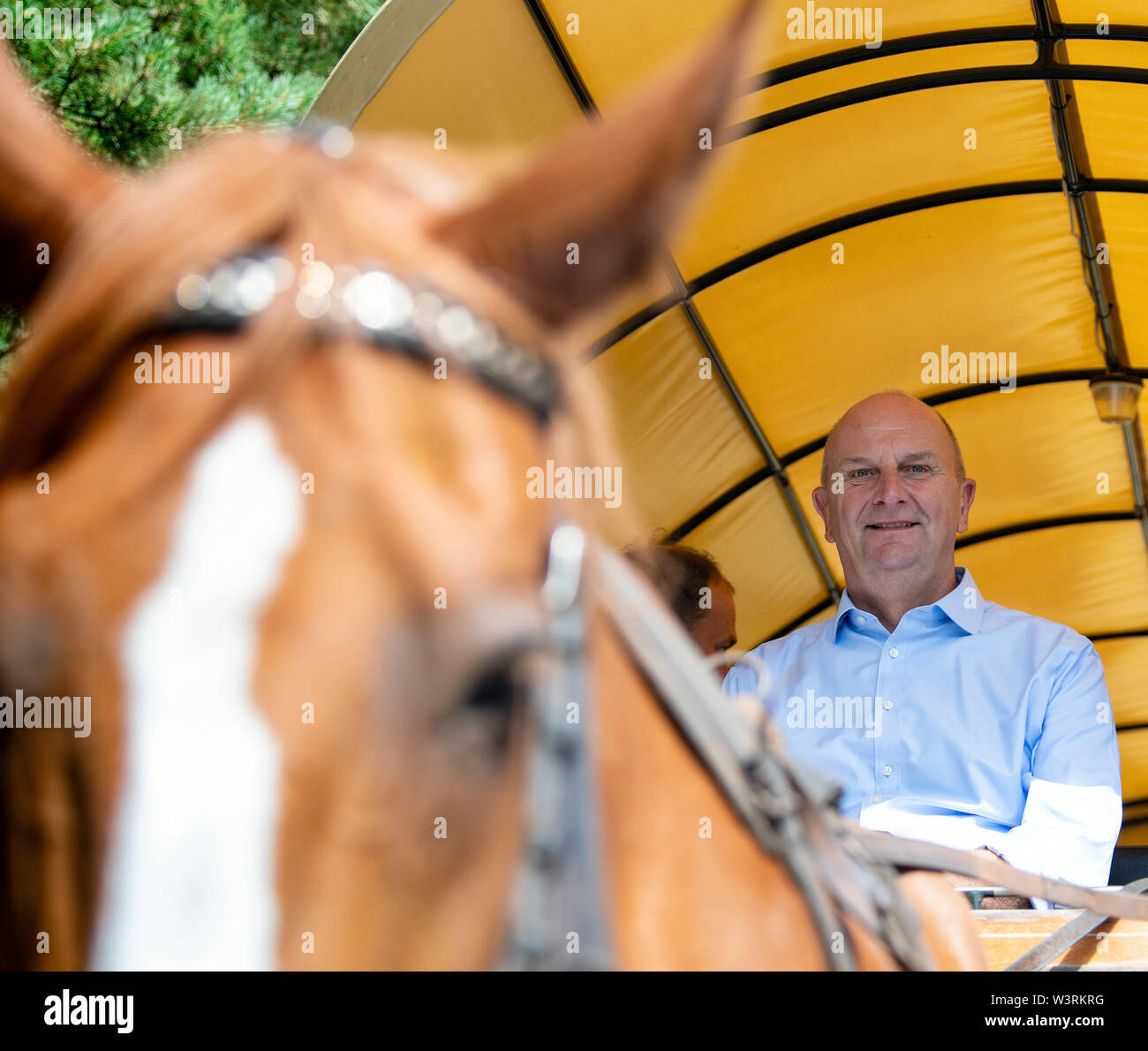 Pfalzheim, Germany. 17th July, 2019. Dietmar Woidke (SPD), Prime Minister of Brandenburg, drives through Sielmann's natural landscape Kyritz-Ruppiner Heide with a Kremser bred by Silesian cold-blooded horses. Credit: Soeren Stache/dpa/ZB/dpa/Alamy Live News - Stock Image