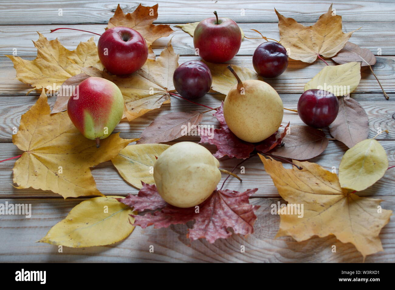 Autumn still life. Various fruits are lying on a wooden desk. Autumn yellow leaves. Harvesting. - Stock Image