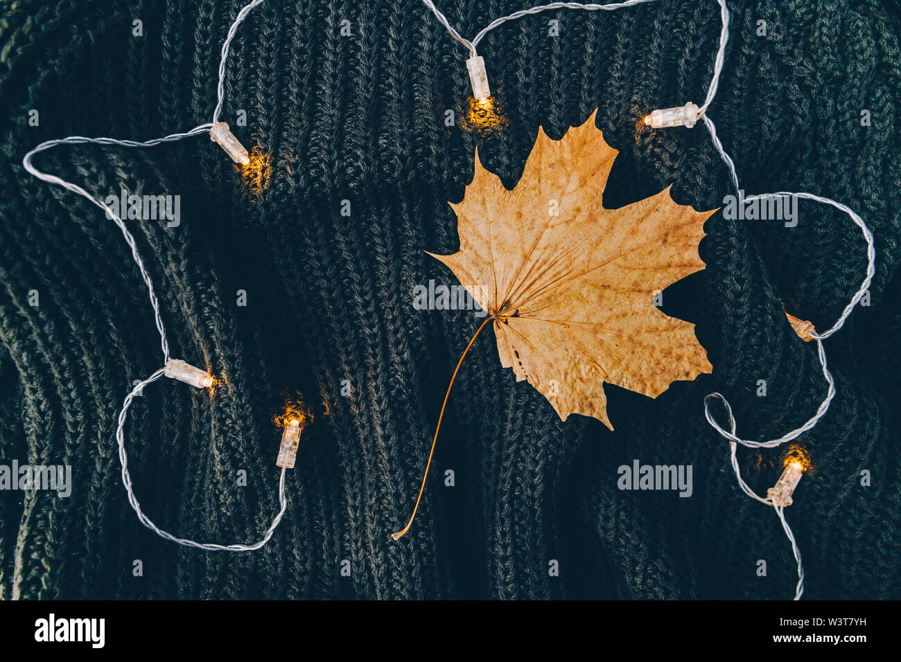 Dried maple leaf on a warm sweater surrounded festoon lights. Cozy fall or winter flat lay, top view. - Stock Image