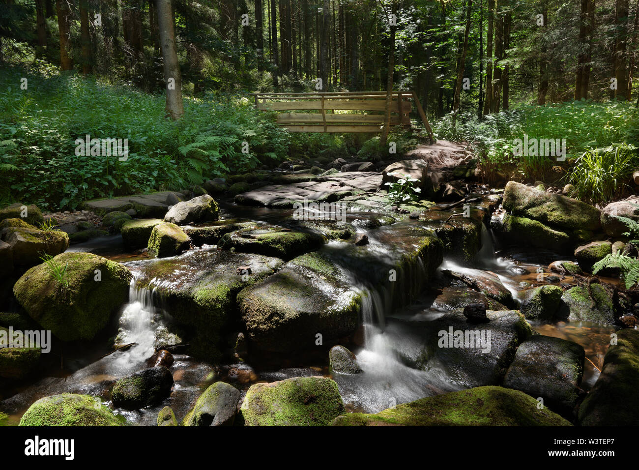 Stony creek bed in the forest with a small wooden bridge - Stock Image