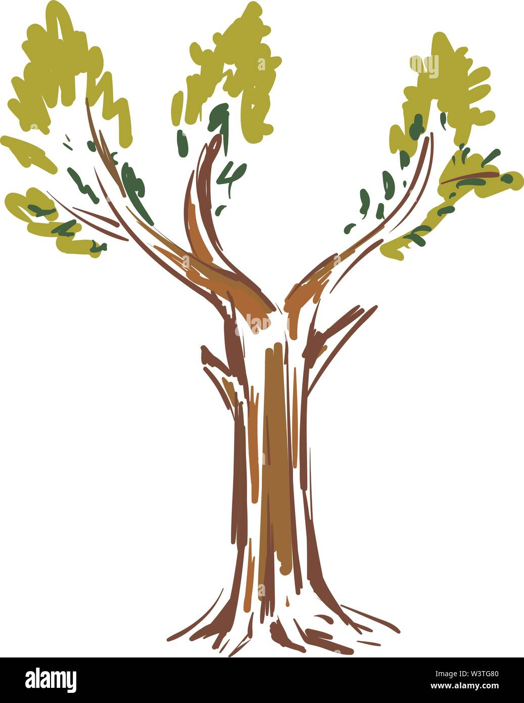 A Colorful Sketch Of A Big Tree With Green Leaves Vector Color Drawing Or Illustration Stock Vector Image Art Alamy