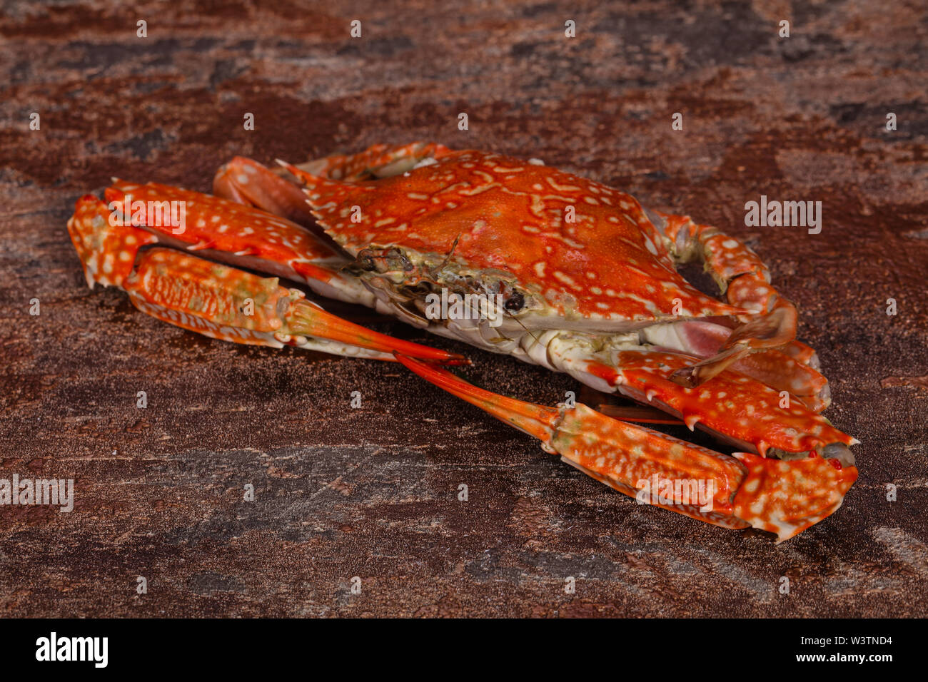 Delicous Boiled crab - ready for eat - Stock Image