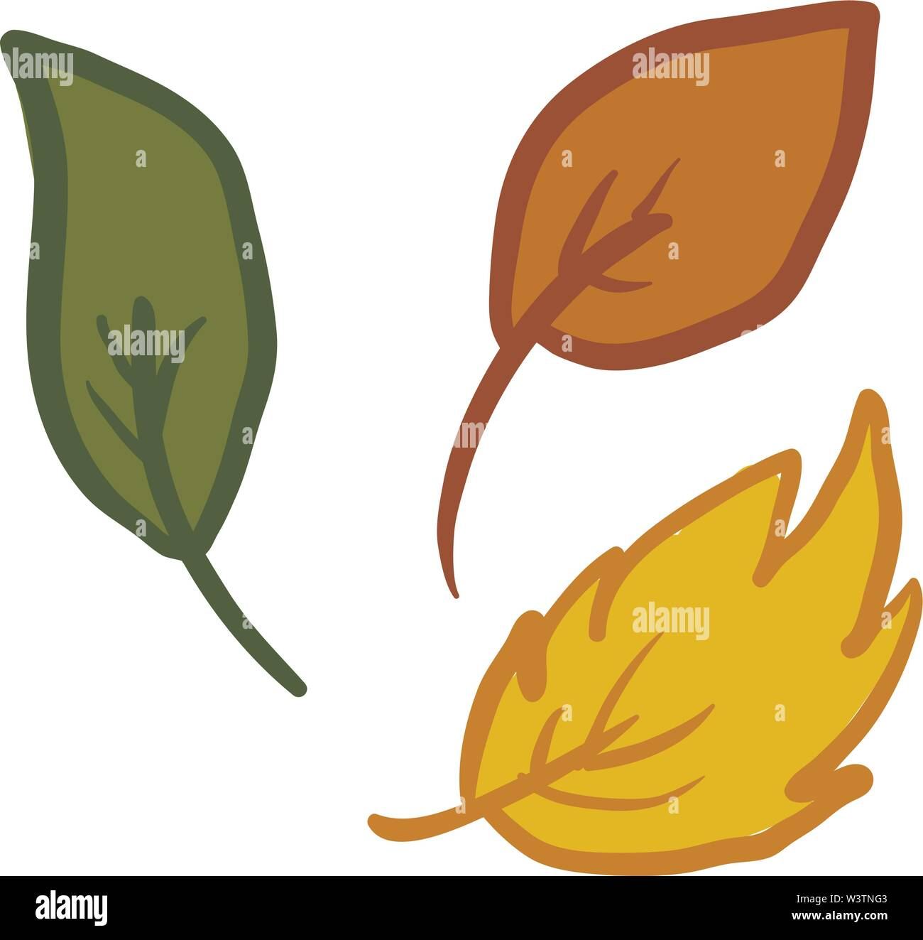 Leaf fall, illustration, vector on white background. - Stock Image