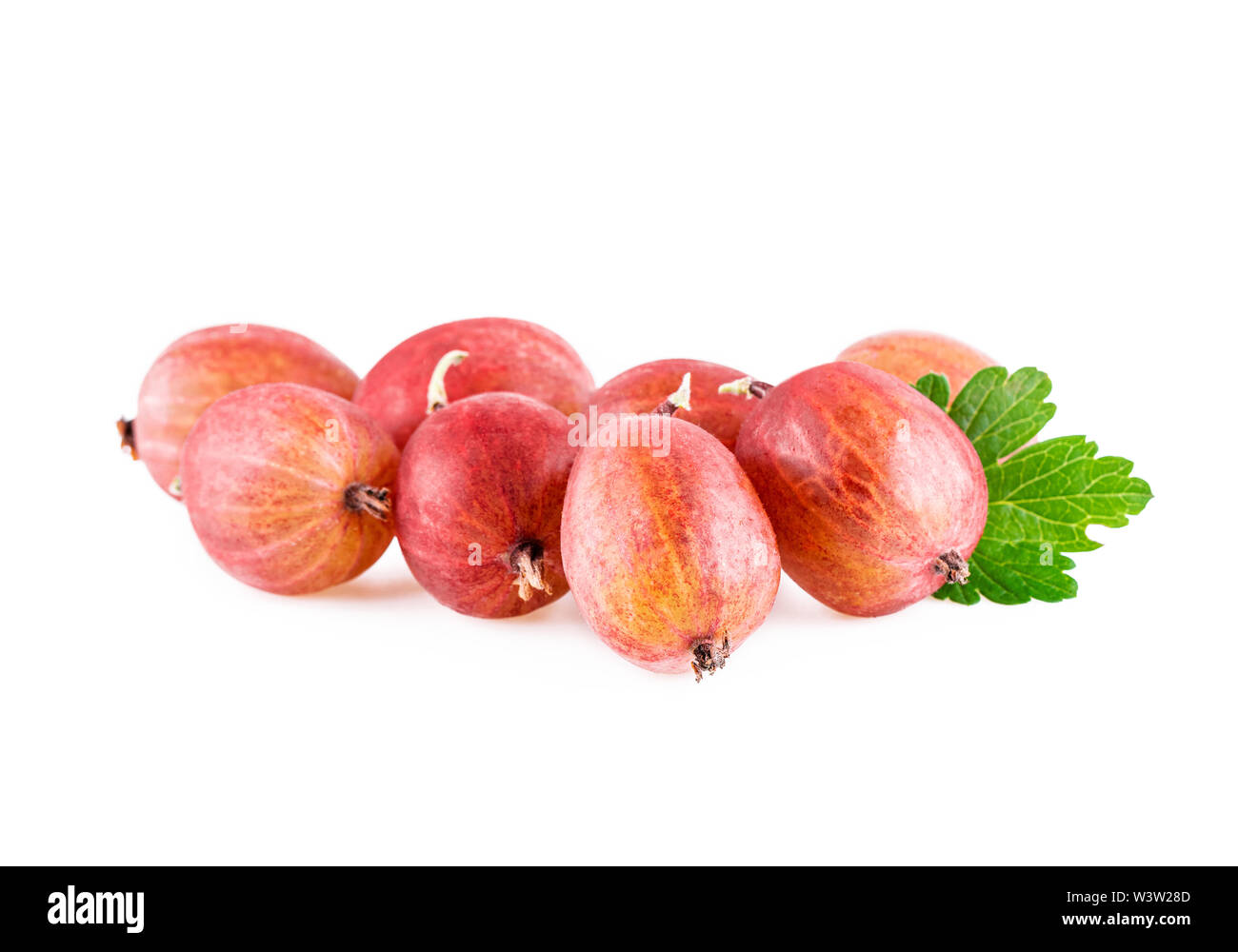 Gooseberries Organic Gooseberry With Leaf On White - Stock Image