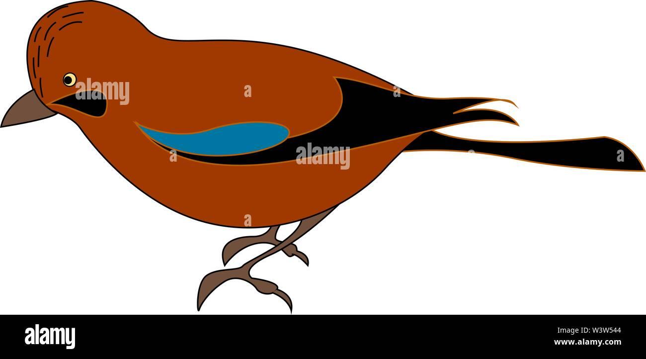 Red jay bird, illustration, vector on white background. - Stock Image