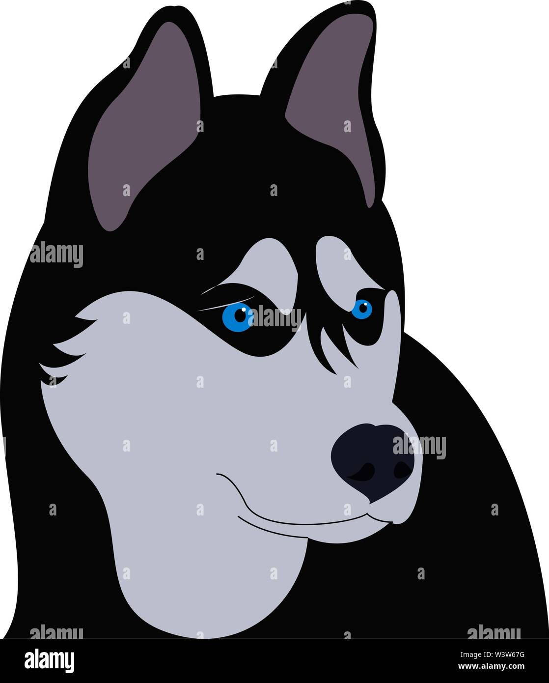 Siberian husky with blue eyes, illustration, vector on white background. - Stock Vector