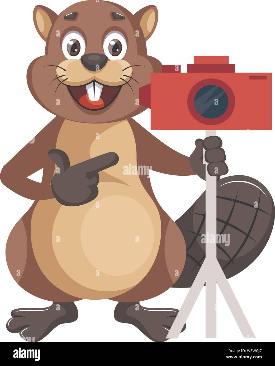 beaver with camera, illustration, vector on white background. - Stock Image