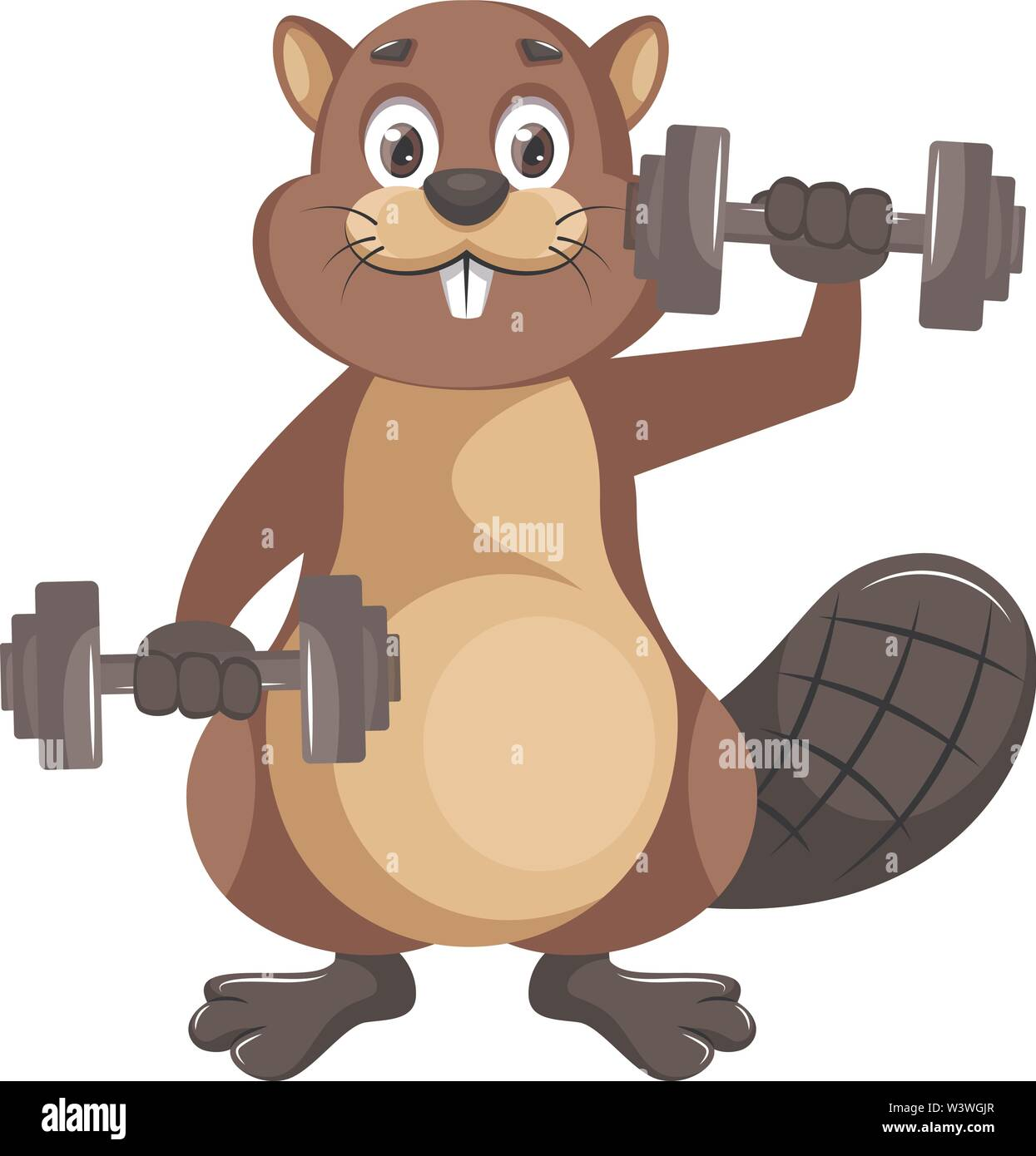 Beaver with weights, illustration, vector on white background. - Stock Image