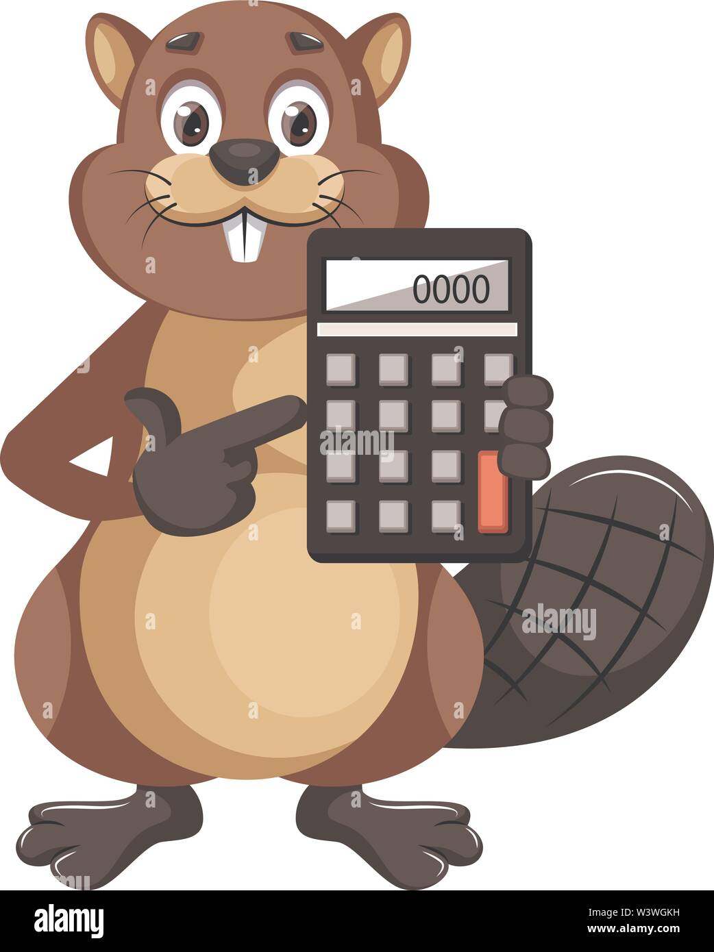 Beaver holding calculator, illustration, vector on white background. - Stock Image