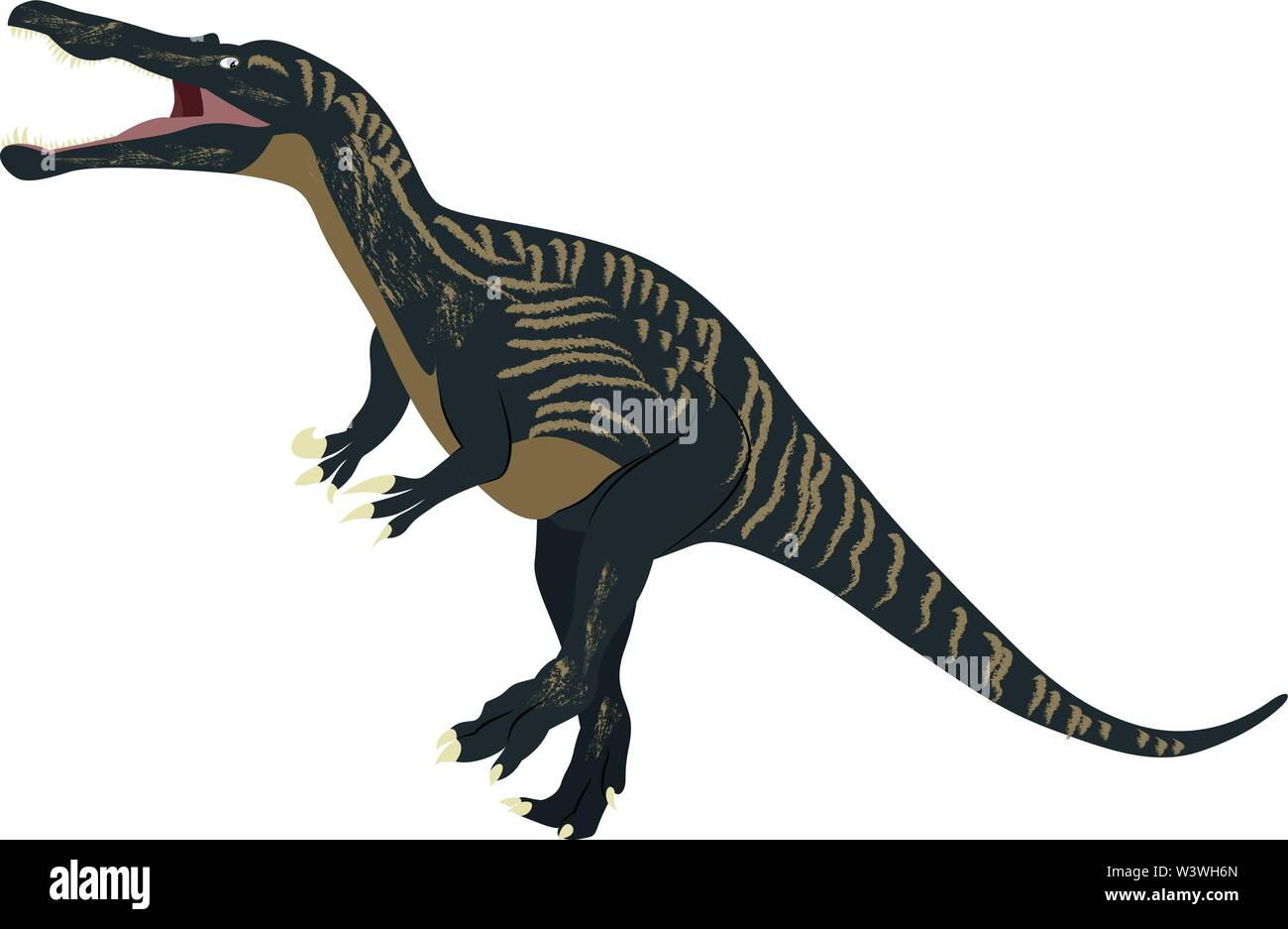 Suchomimus, illustration, vector on white background. - Stock Image