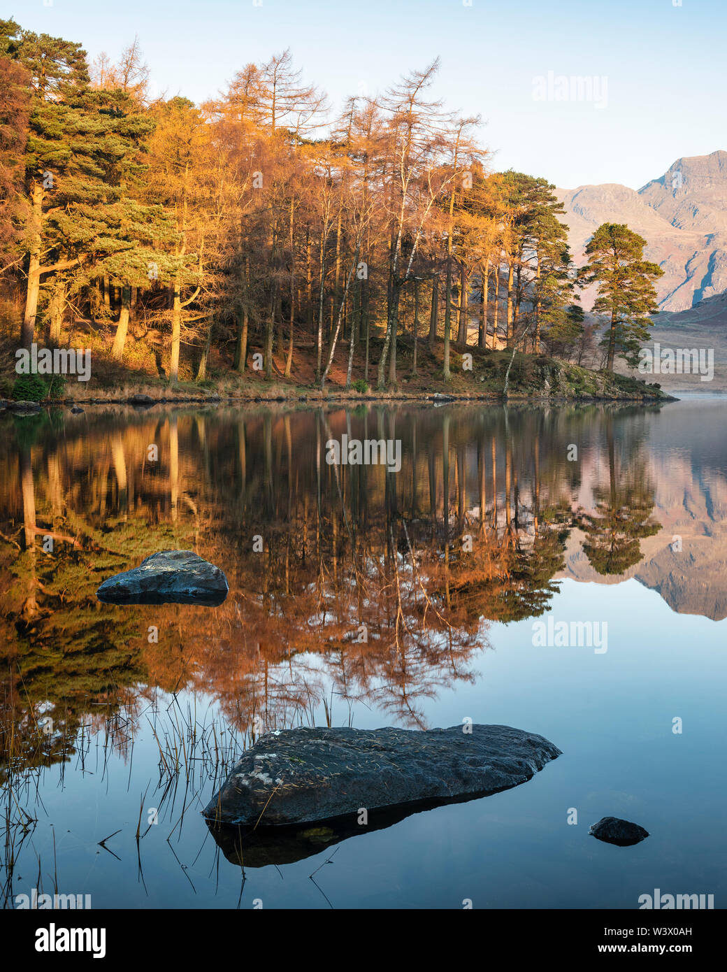 Stunning Autumn Fall vibrant sunrise over Blea Tarn in the Lake District with High Raise and The Langdales in the distance - Stock Image