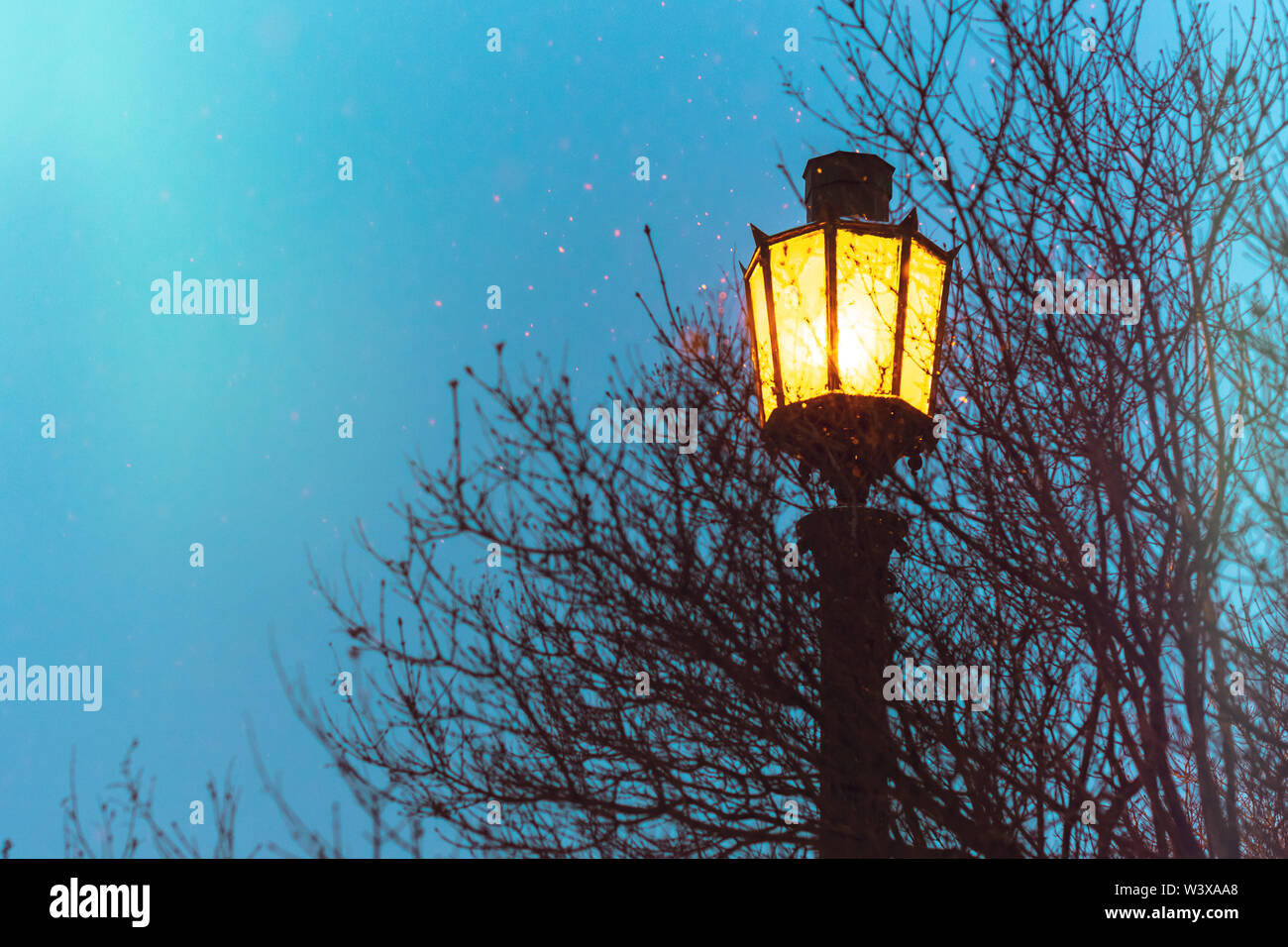 Street light, vintage gothic style with copy space. Fairy yellow light illuminates, beautiful street decoration. Clear night sky. - Stock Image