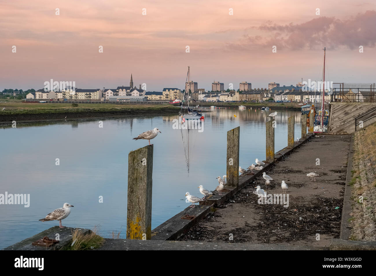 Irvine Harbour North Ayrshire Scotland on a calm summers evening with reflections seagulls and boats with the Irvine Town Spires in the distance. Stock Photo
