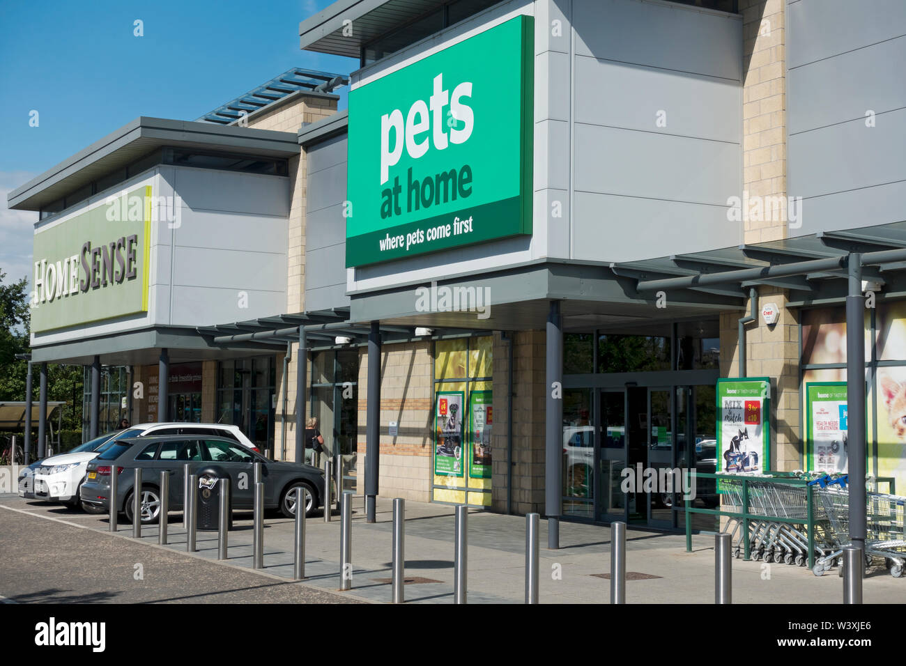 Pets At Home High Resolution Stock Photography And Images Alamy