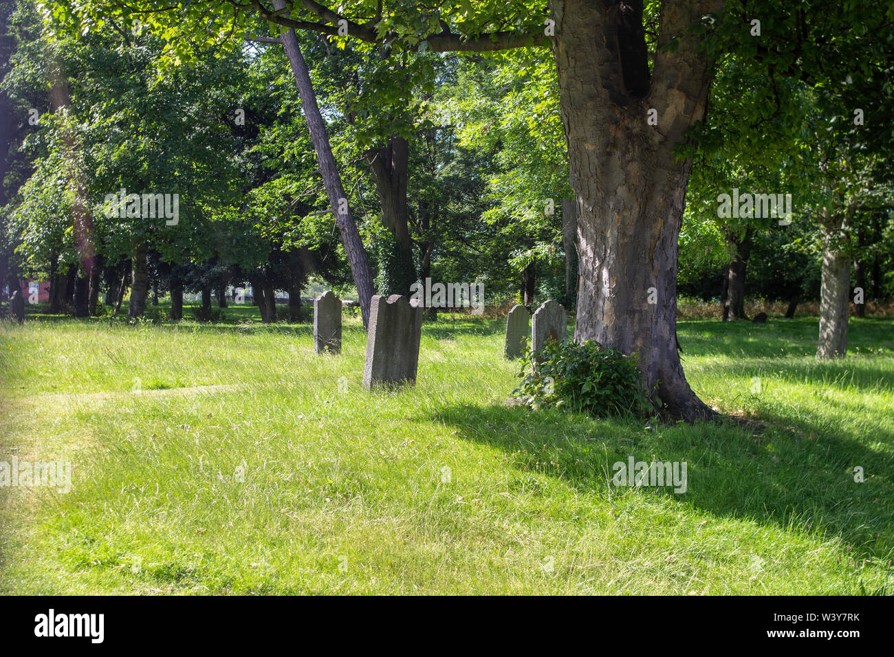 Bullys Acre Graveyard in the grounds of the Royal Hospital, Kilmainham, Dublin,Closed in 1832 due to serious overcrowding caused by cholera outbreak. - Stock Image