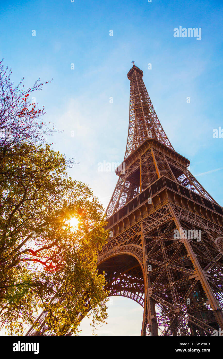 France, Paris, Eiffel Tower, sun behind tree - Stock Image