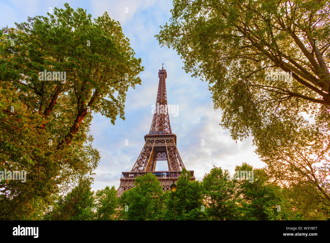 France, Paris, Eiffel Tower framed by trees - Stock Image