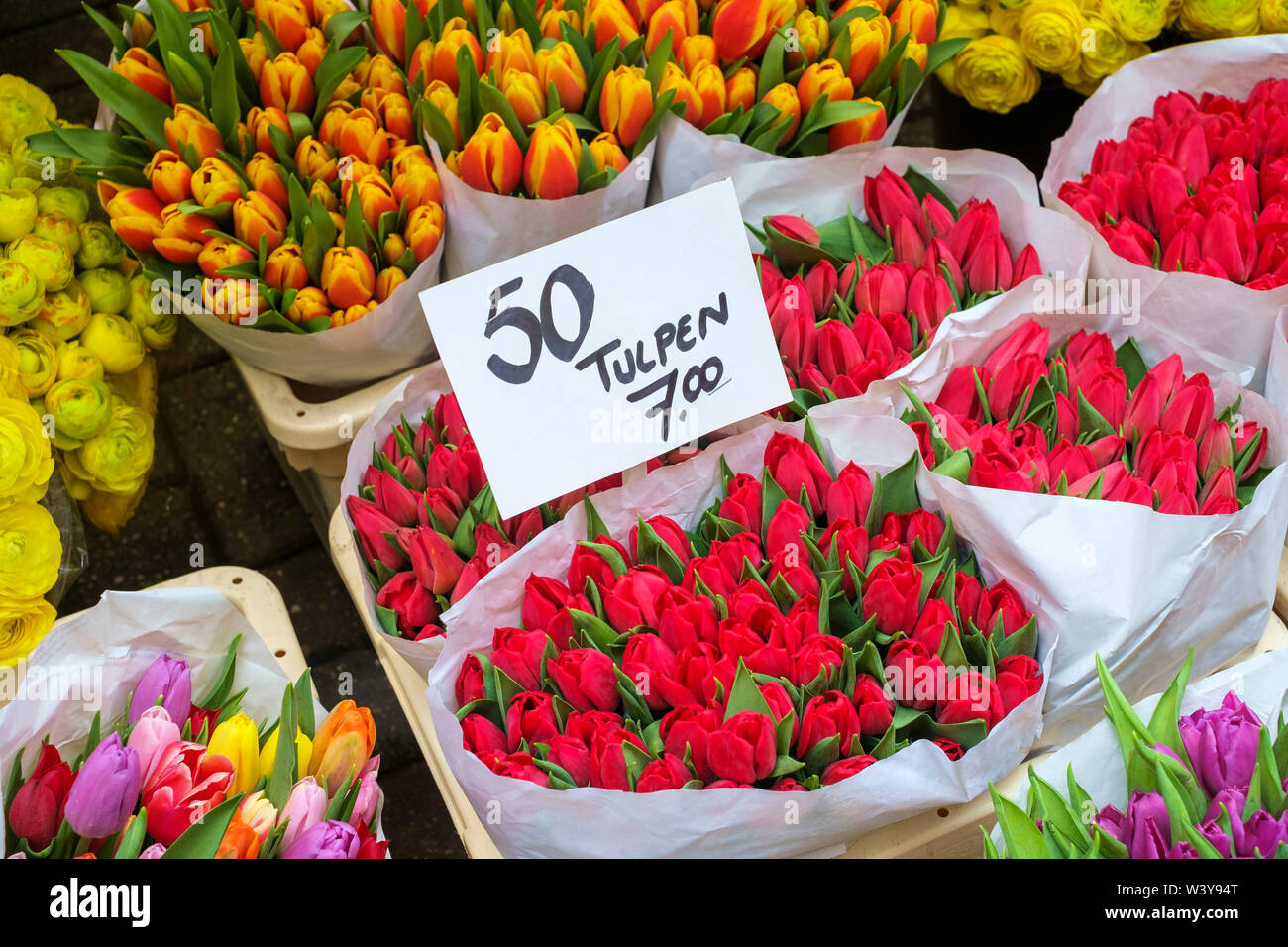Bouquets of tulips for sale in the Bloemenmarkt floating flower market, Amsterdam, North Holland, Netherlands - Stock Image