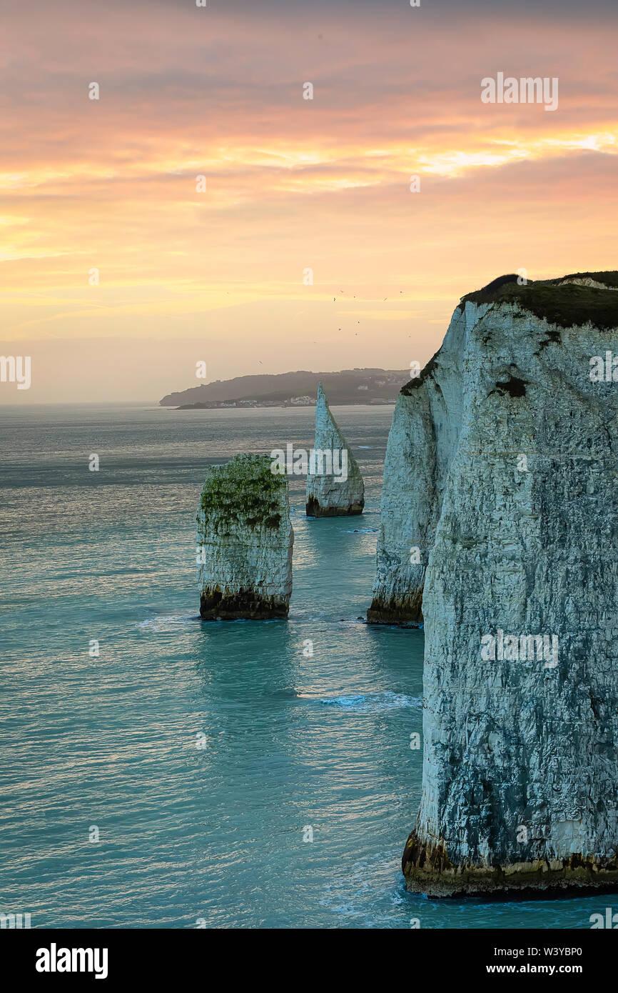 The rocks stacks near Old Harry Rocks at  golden sunset, Isle of Purbeck, Dorset, Jurassic Coast. England. Panorama,  Long exposure - Stock Image