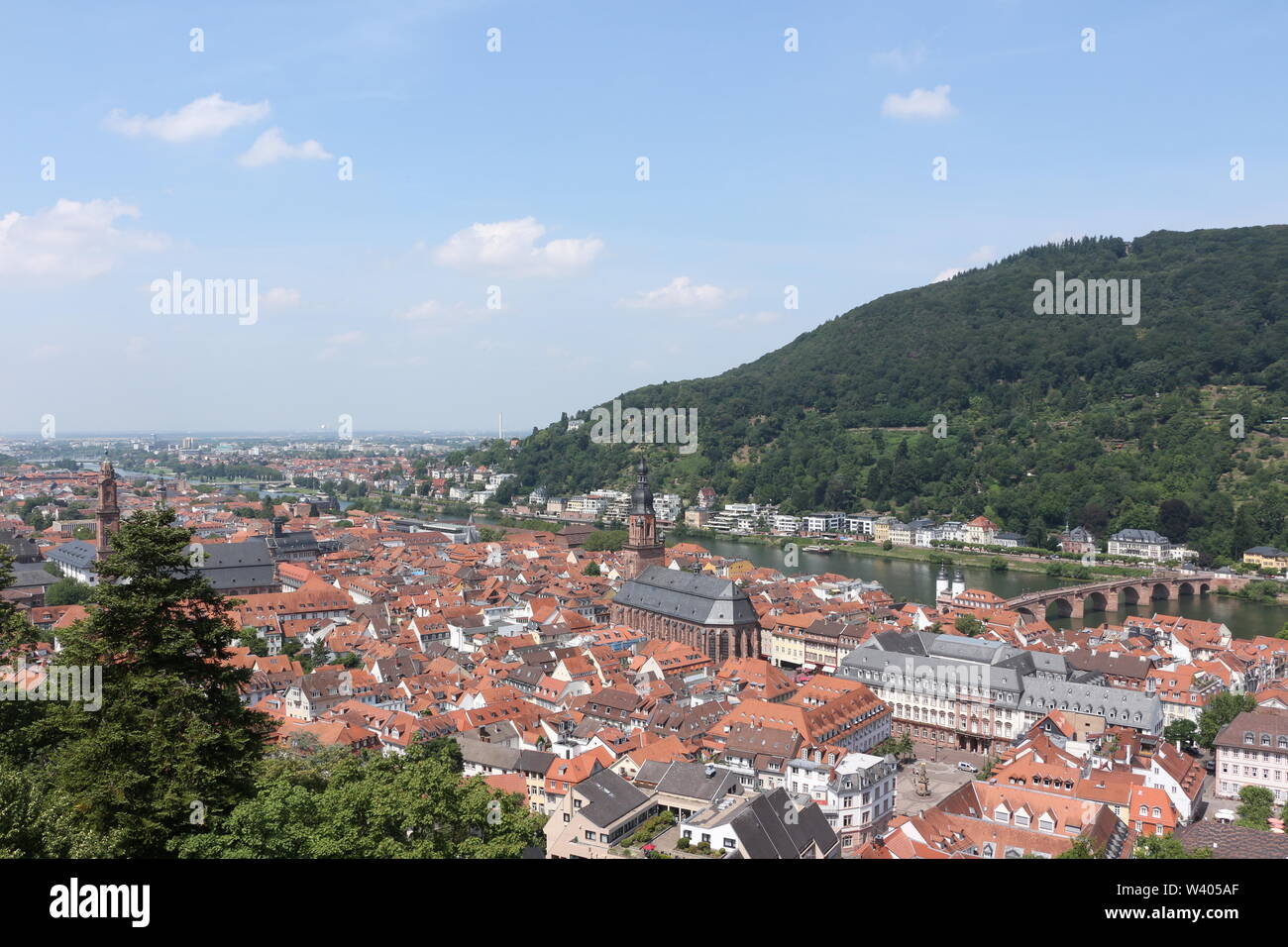 Blick über die Altstadt von Heidelberg - Stock Image