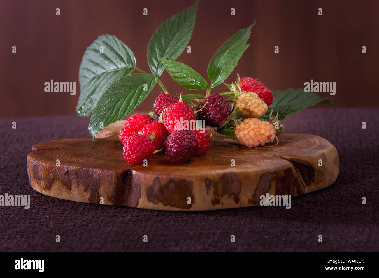 Freshly raspberries pickled from organic culture - Stock Image