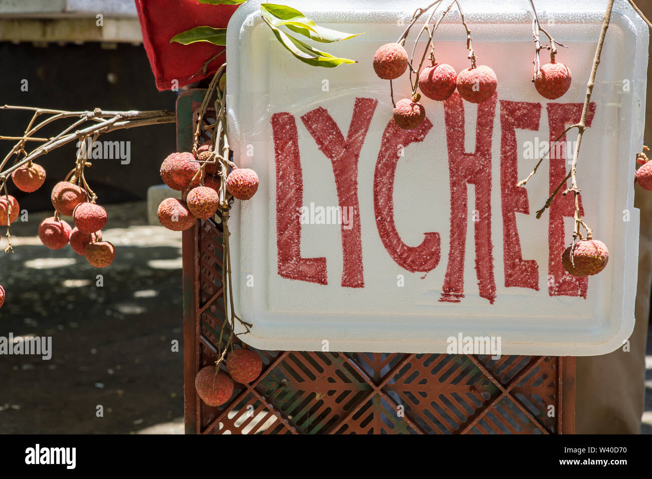 A vendor's lychee sign near the beach in Hilo, Hawaii - Stock Image