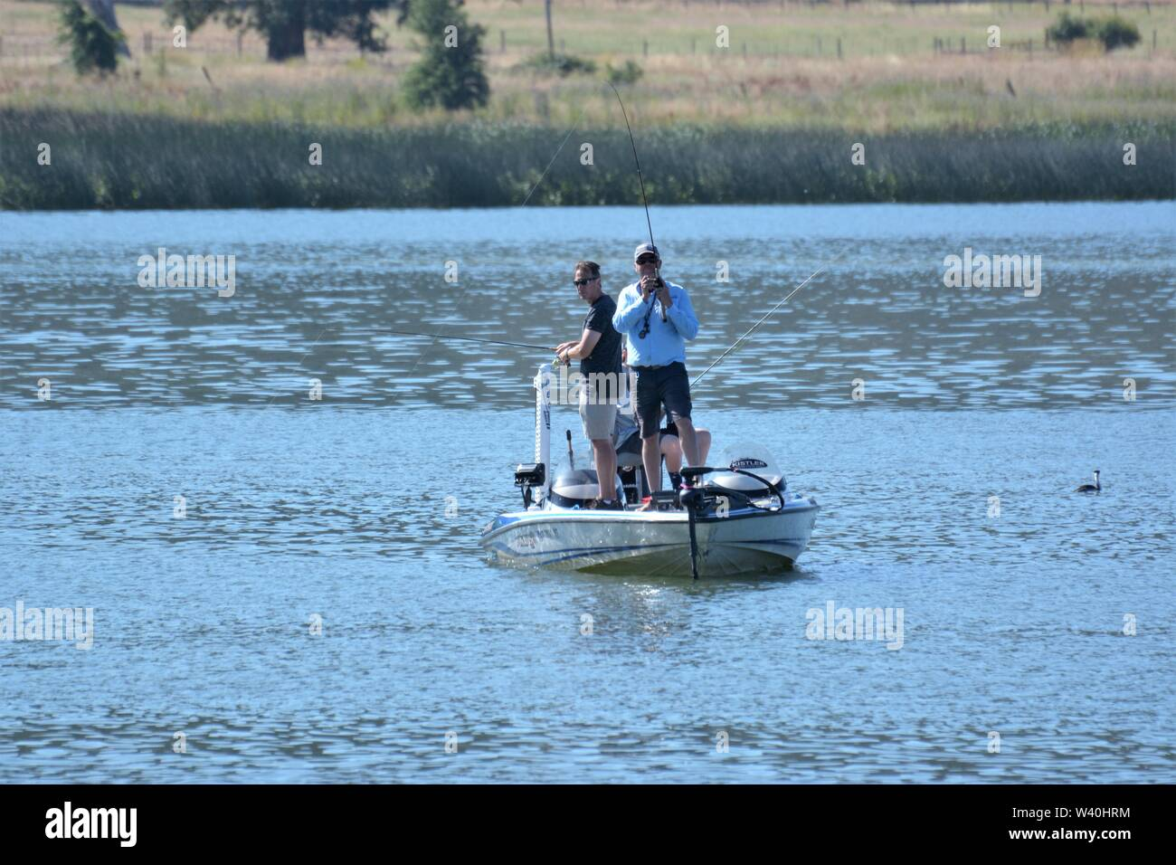 Men Fishing For Real Bass From Boats In Clear Lake Clearlake California Usa In Bass Boat On Warm Clear Day For Fun And Hobby America Stock Photo Alamy