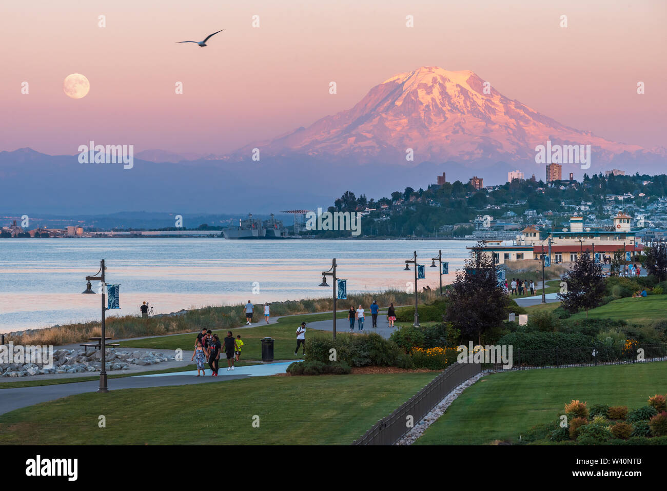 Mt Rainier Hovers Over Downtown Tacoma and Commencement Bay as Seen from Point Ruston with people walking and a Seagull - Stock Image